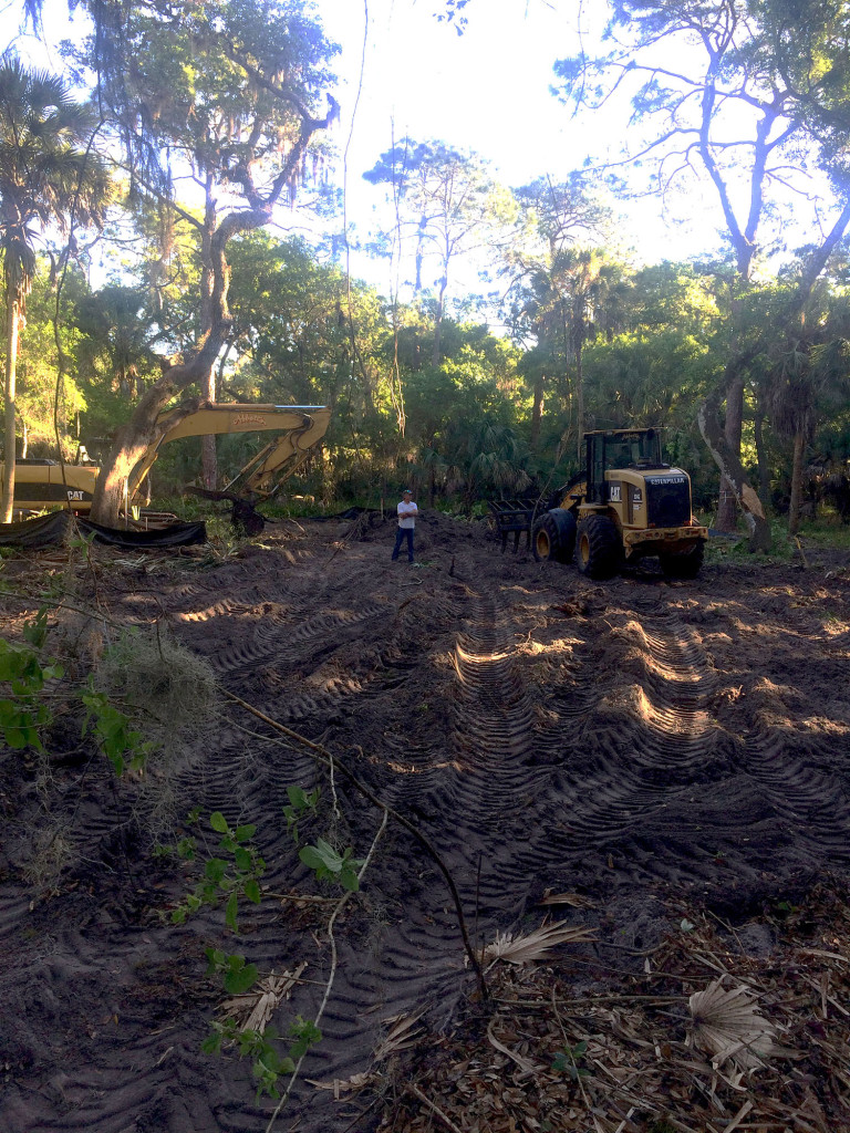 Parson Architecture Sarasota Site Clearing